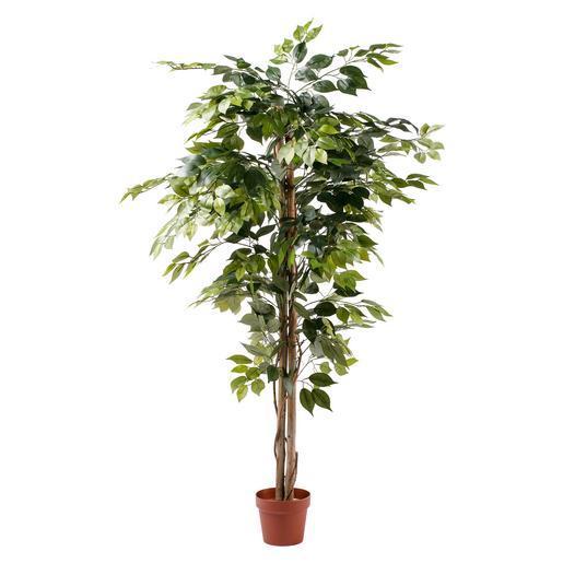 ficus artificiel h 150 cm - Arbuste Artificiel Exterieur Pas Cher