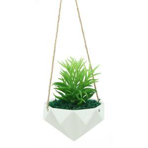 Suspension de succulente en pot