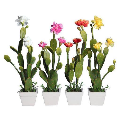 """Résultat de recherche d'images pour """"pot en ceramique avec cactus"""""""