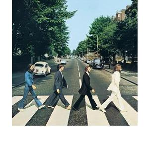 Toile Beatles Abbey Road - Bois et coton - 45 x 45 cm - Multicolore