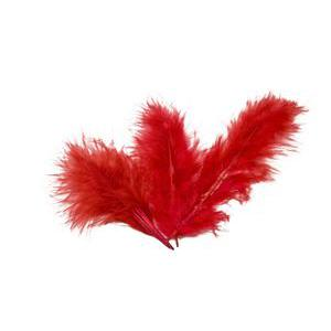 20 plumes - 10 g - Plume et polyester - Rouge
