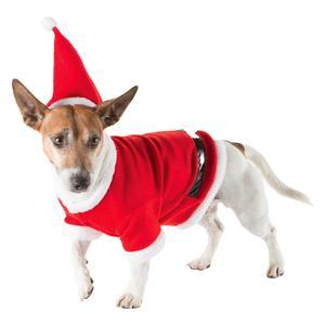 Costume chien Noel - 3 tailles
