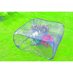 Filet pop-up anti-oiseaux / insectes - 95 x 95 x H 50 cm - Transparent