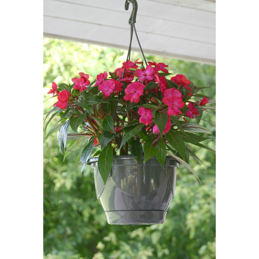 Suspension Fleurs Plastique Gris Pots De Fleur Et Cache Pot